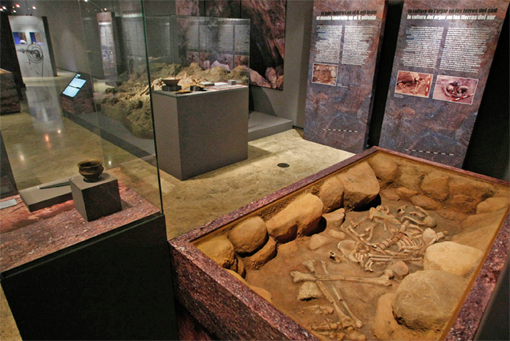 Exposición itinerante 'Restes de vida, restes de mort'