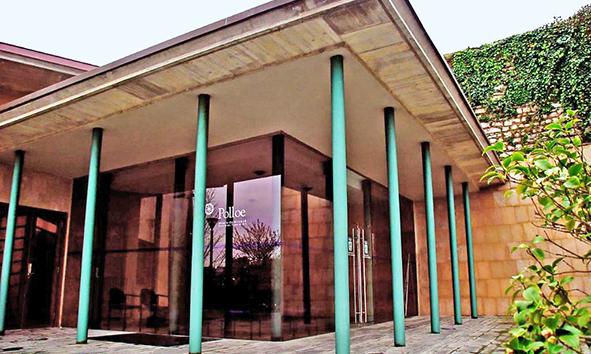 crematorio_de_polloe