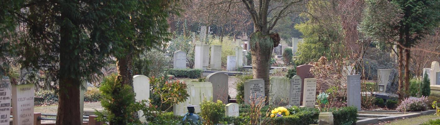 cementerio_holanda_web