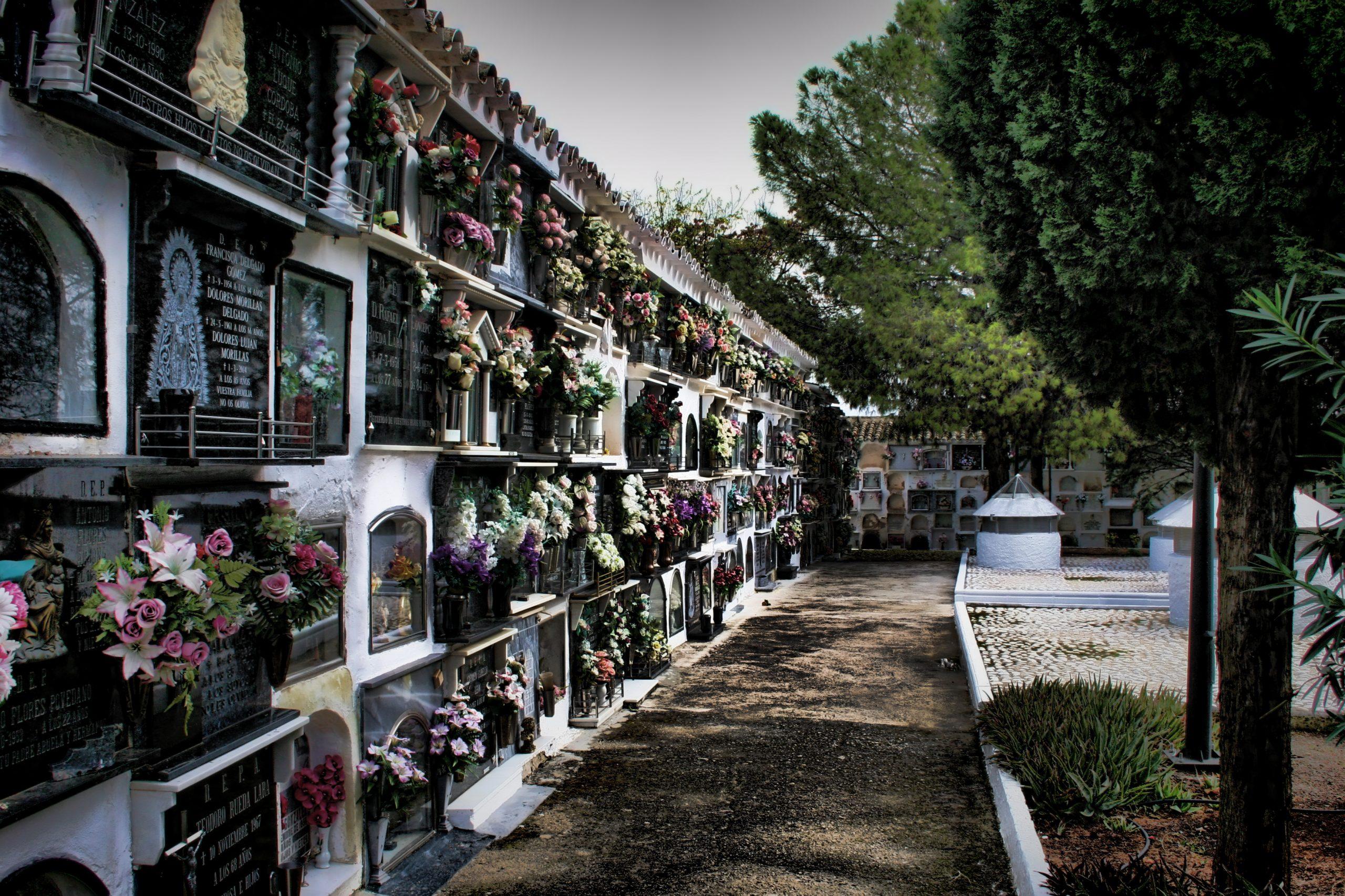 cementerio_de_monturque