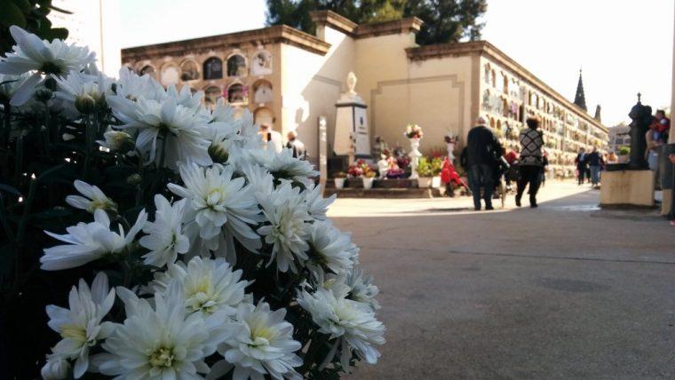 decreto_servicios_funerarios