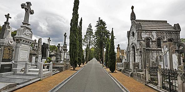 cementerio_de_polloe_visitas_guiadas
