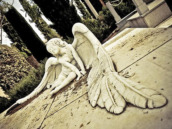 cementerios_vivos_granada_erfc-7