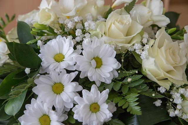 flowers-3990696_640
