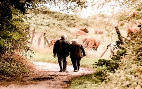 ¿Qué debemos saber sobre las herencias?